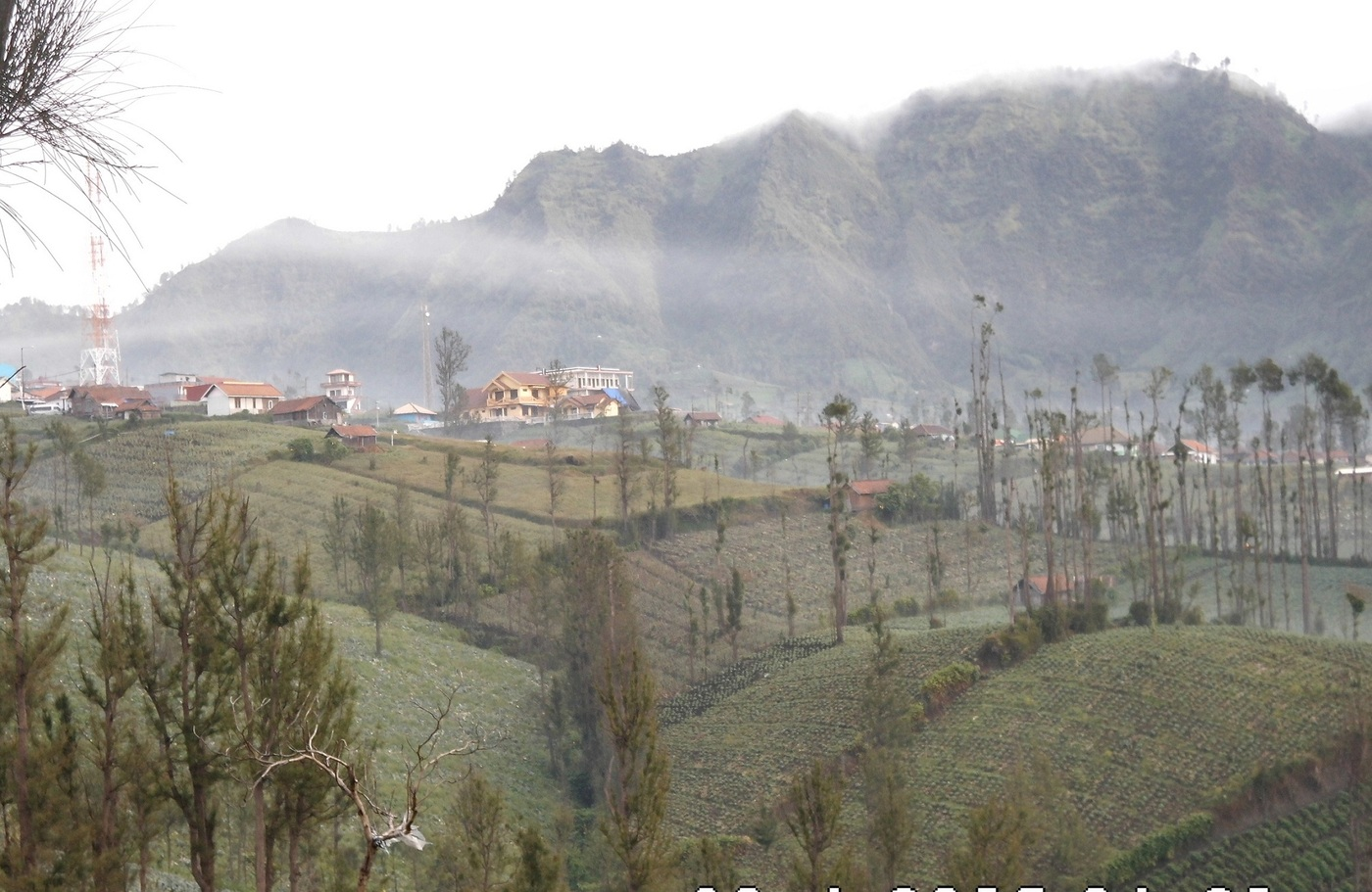 User submitted photo of East Java