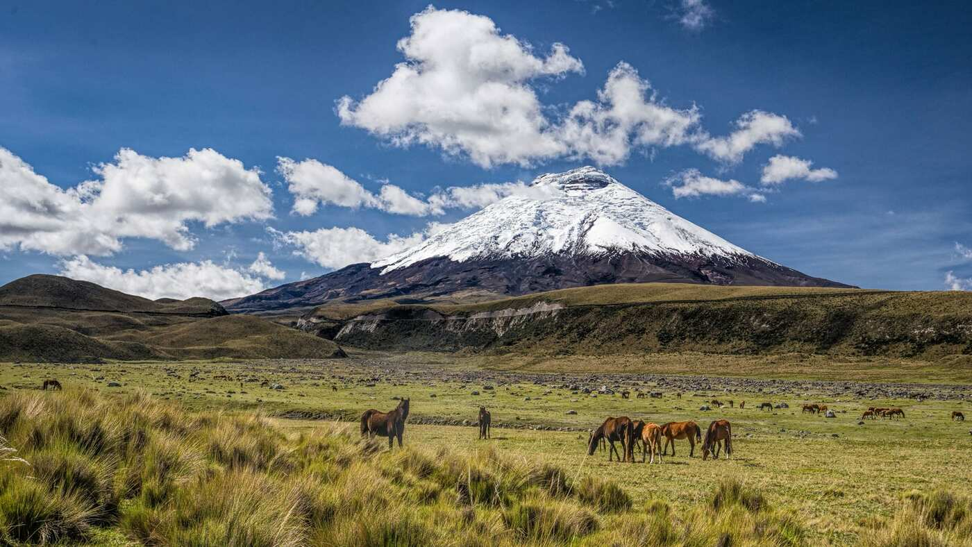 User submitted photo of Ecuador