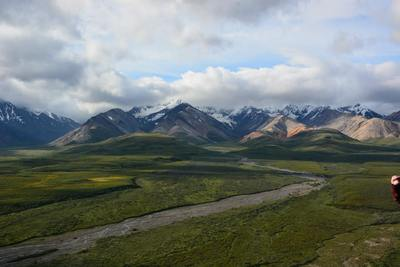 Denali National Park, Denali National Park