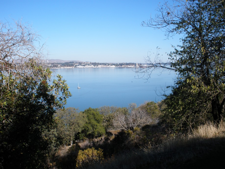 Trip photo #1/24 View across the strait to Benicia