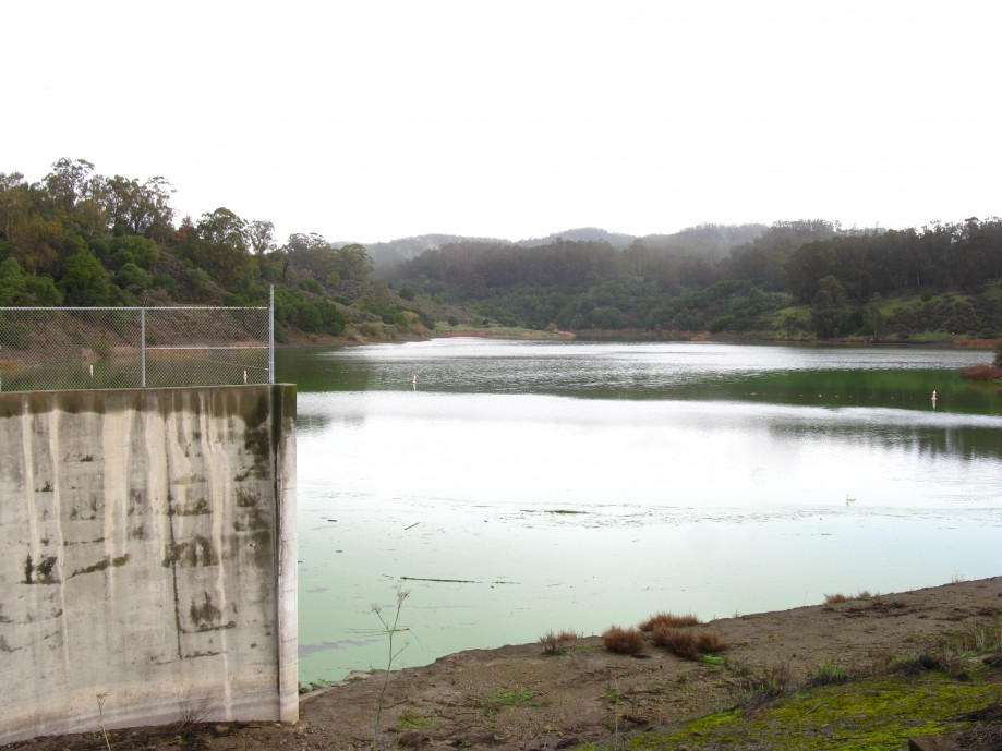 Trip photo #6/32 Lake Chabot Rsvr. - still very low level