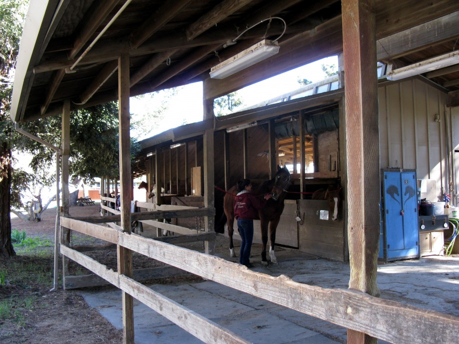 Trip photo #11/20 Stables at end of Horseshoe trail