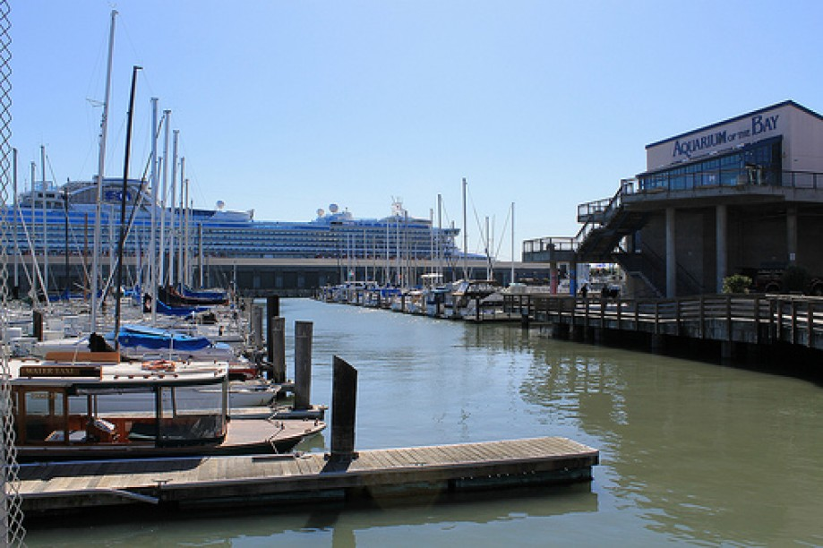 Trip photo #66/109 PIER 39 San Francisco