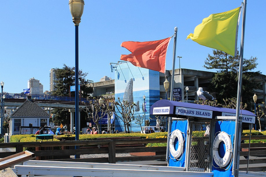 Trip photo #82/109 PIER 39 San Francisco