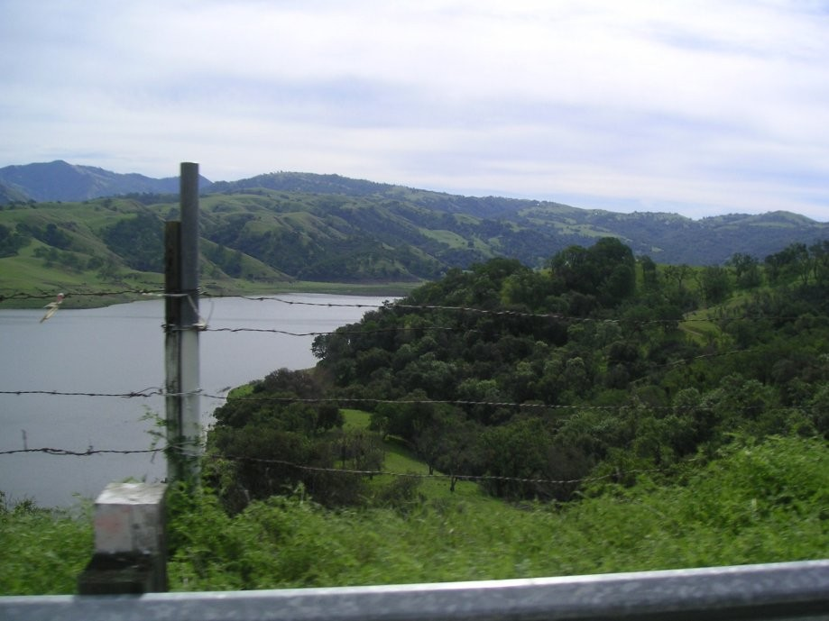 Trip photo #7/31 Calaveras Reservoir