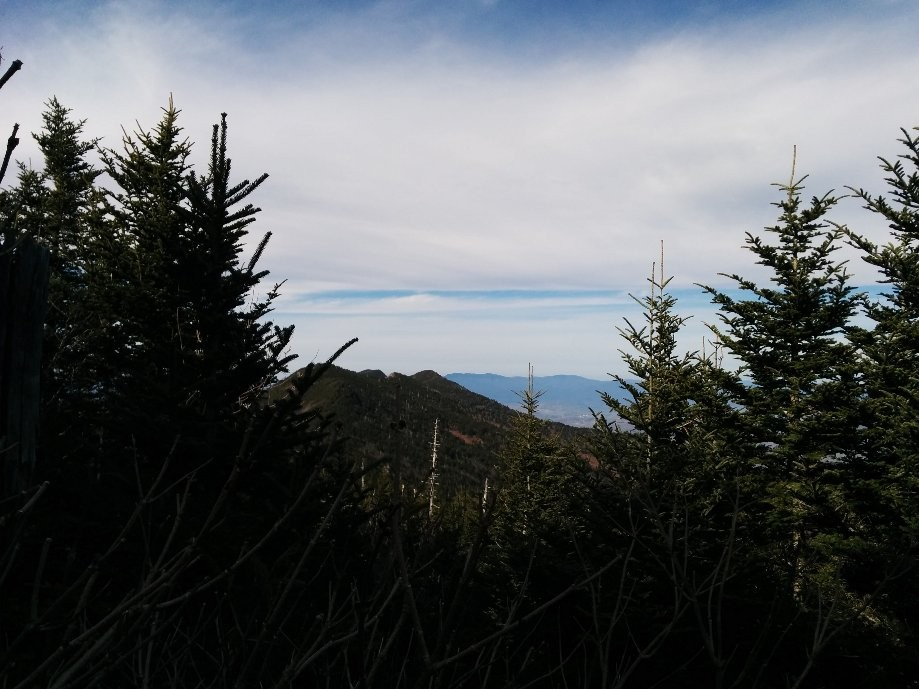 Trip photo #7/11 View on the trail to Mt. Mitchell.