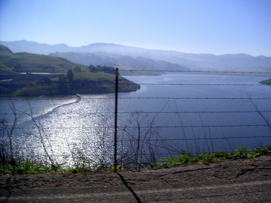 Trip photo #7/32 Calaveras Reservoir