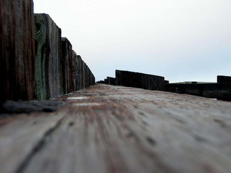 Trip photo #5/6 On Top of Old Dock