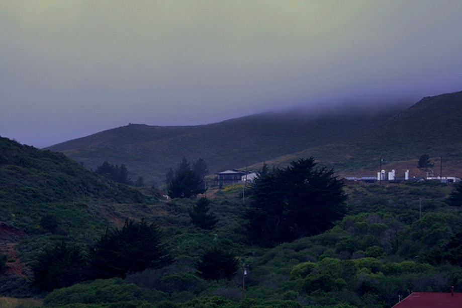 Trip photo #2/25 Fog in the Marin Headlands