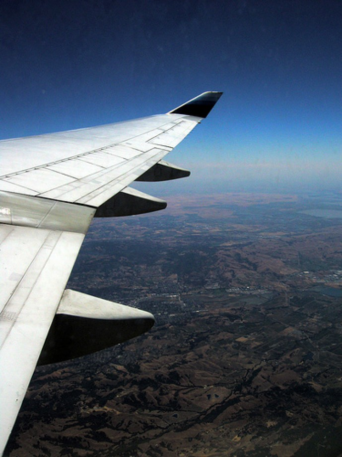 Trip photo #29/88 UAL flight