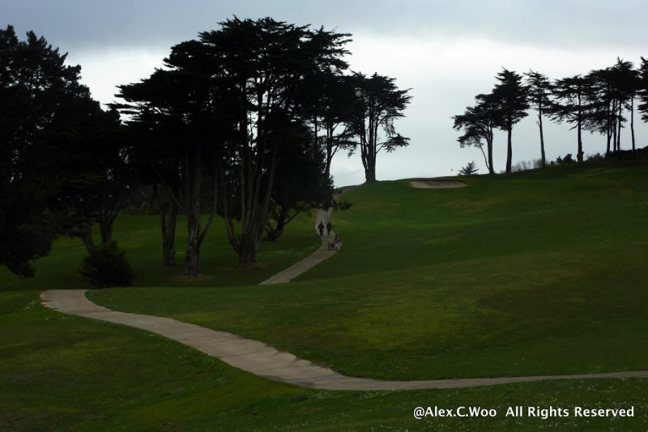 Trip photo #14/29 Lincoln Park Golf Course