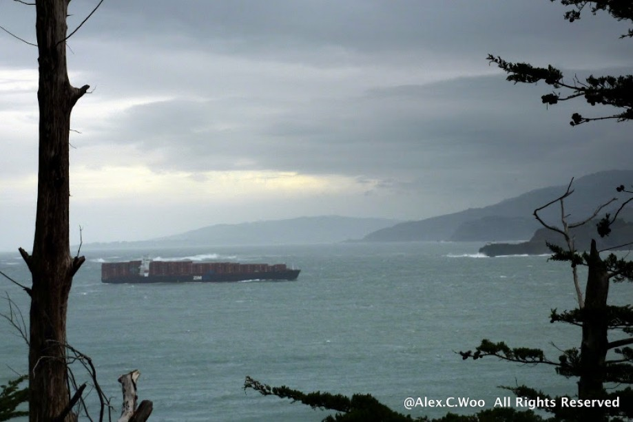 Trip photo #29/29 Yet another container ship