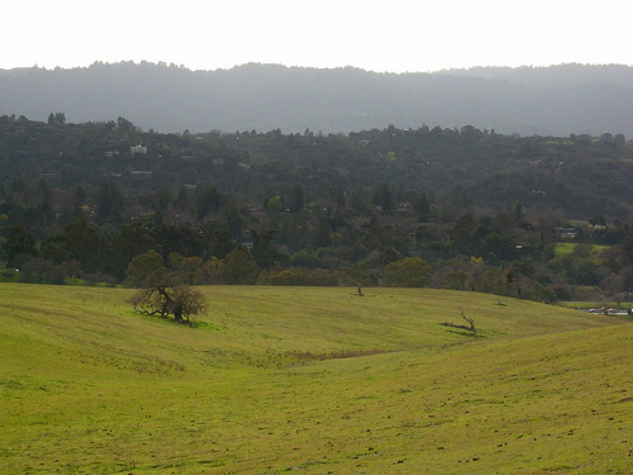 Trip photo #24/34 Toward Palo Alto Hills