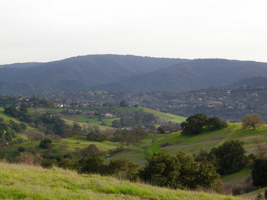 Trip photo #32/34 Toward Palo Alto Hills (Page Mill Road)