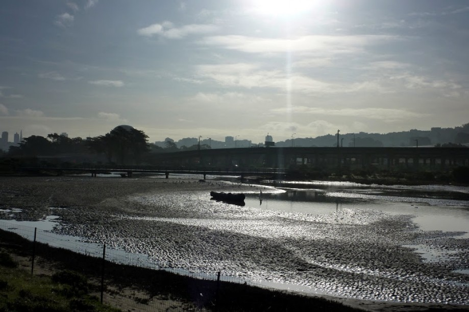 Trip photo #5/41 Low Tide