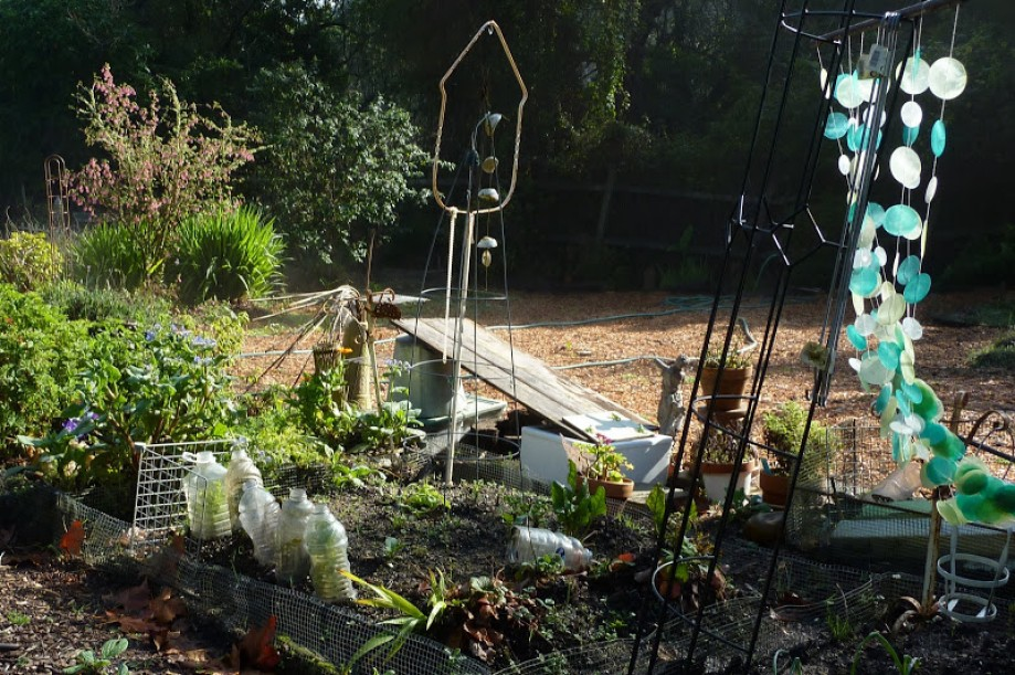 Trip photo #33/41 Fort Scott Community Garden