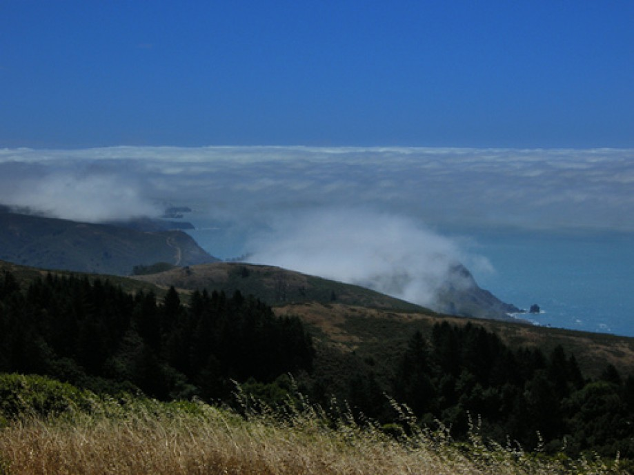 Trip photo #12/30 Marin Coast South