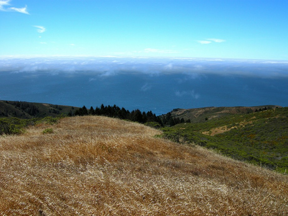 Trip photo #13/30 Marin Coast East