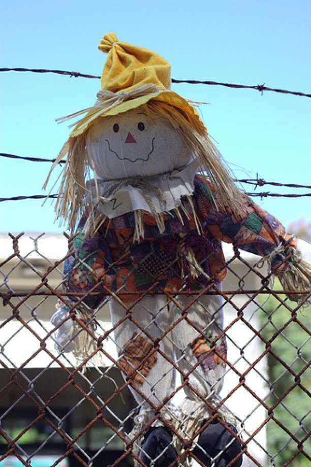 Trip photo #6/14 Scare Crow Doll
