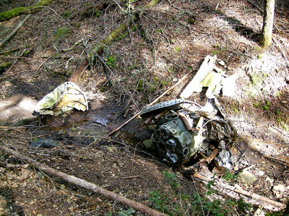 Trip photo #27/53 Motor in Light Plane Wreckage