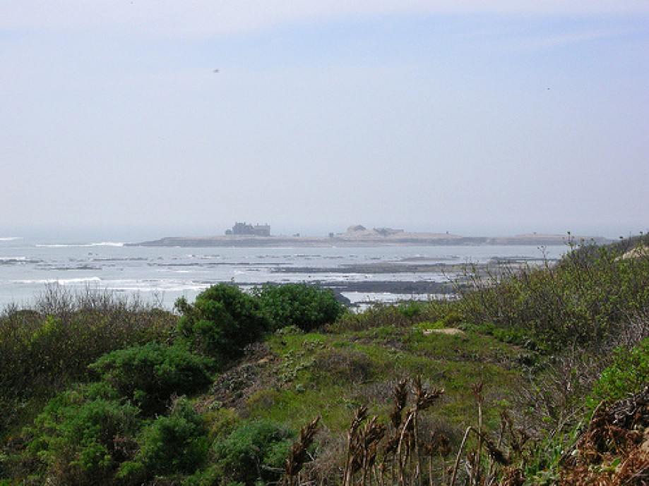 Trip photo #3/25 Structures on Ano Nuevo Island