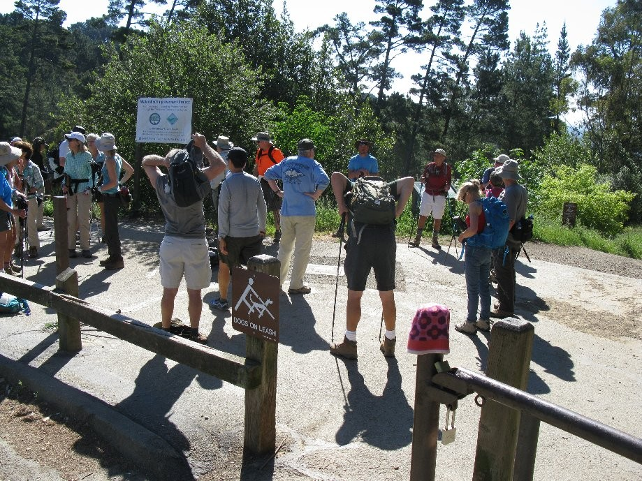 Trip photo #1/7 Circling up at the start (Skyline Gate)