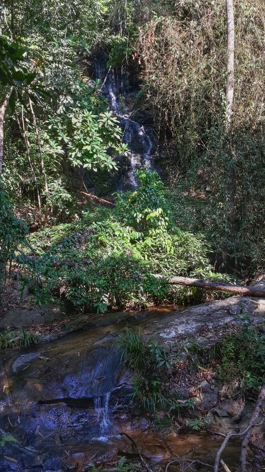 Trip photo #3/5 Last Waterfall on the trail.  Most people visit this by walking down from Doi Suthep Temple.