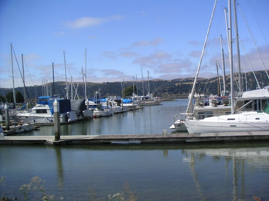 Trip photo #12/20 Benicia Marina