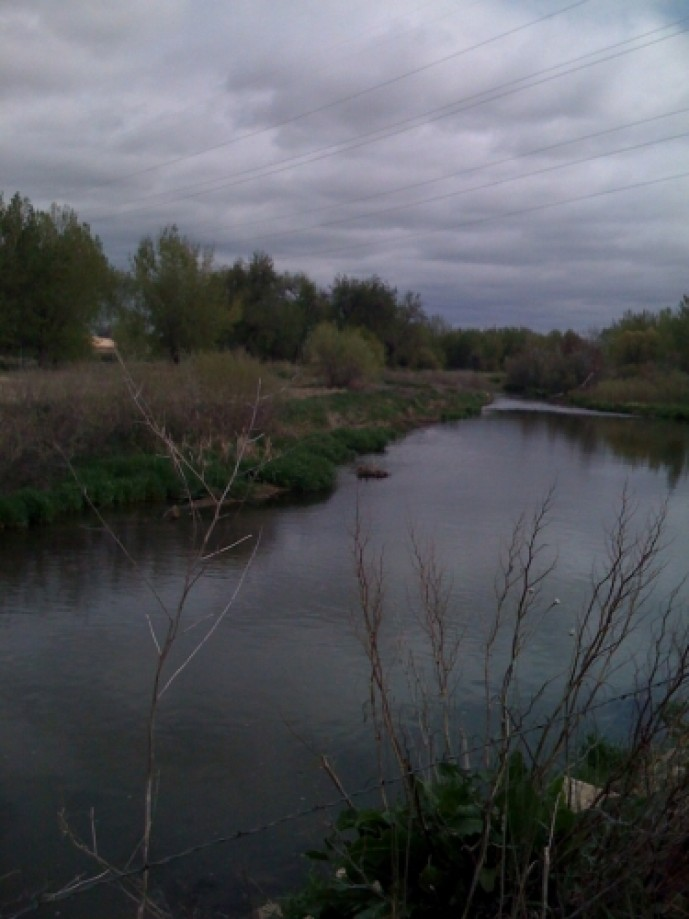 Trip photo #5/24 Poudre-Learning-Center_5.jpg