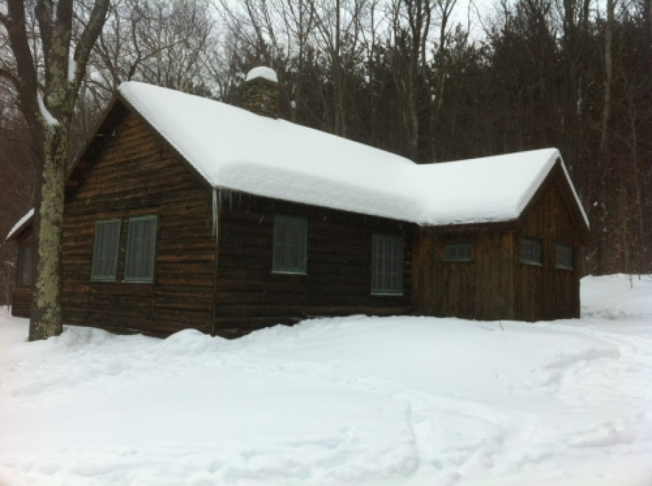 Trip photo #3/6 Forst Cabin