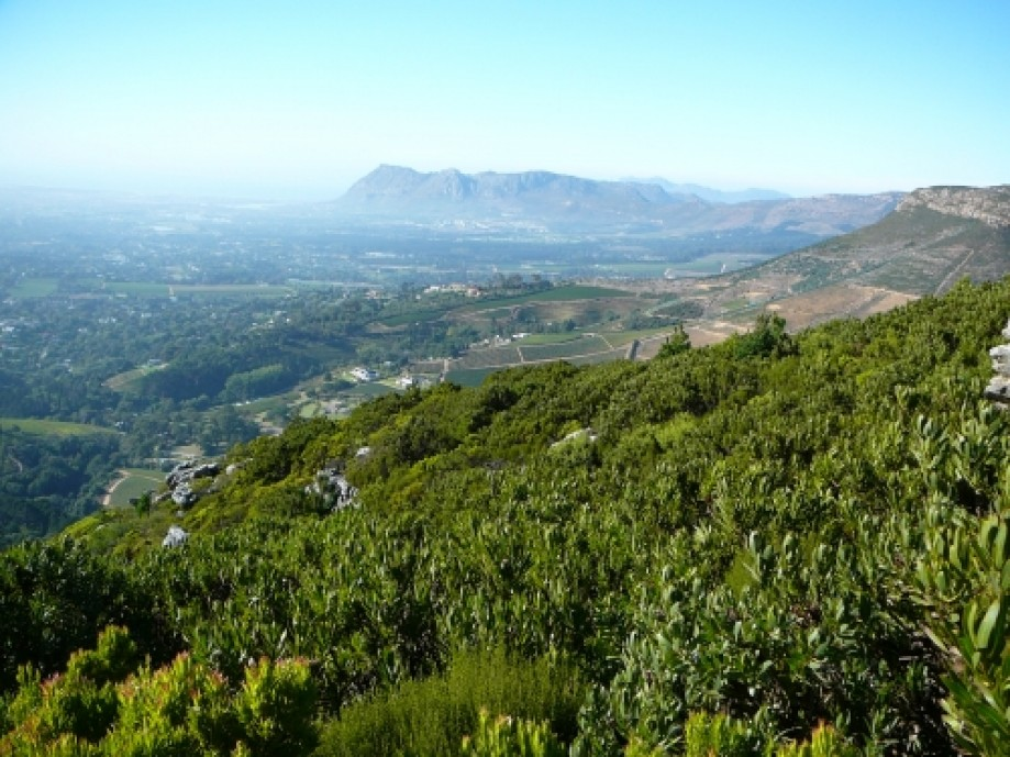 Trip photo #4/16 Constantia below, Muizenberg Peak in the distance.