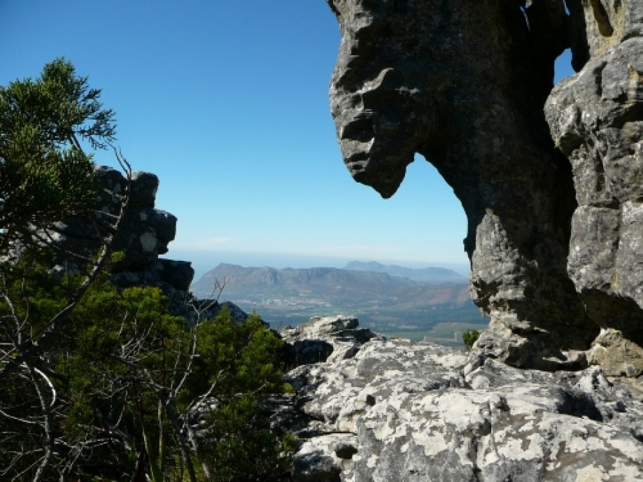 Trip photo #11/16 View from the foot of Camel Rock.