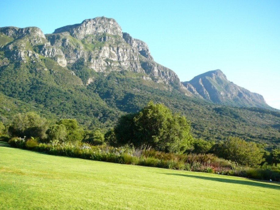 Trip photo #1/16 View of the mountain from Kirstenbosch.