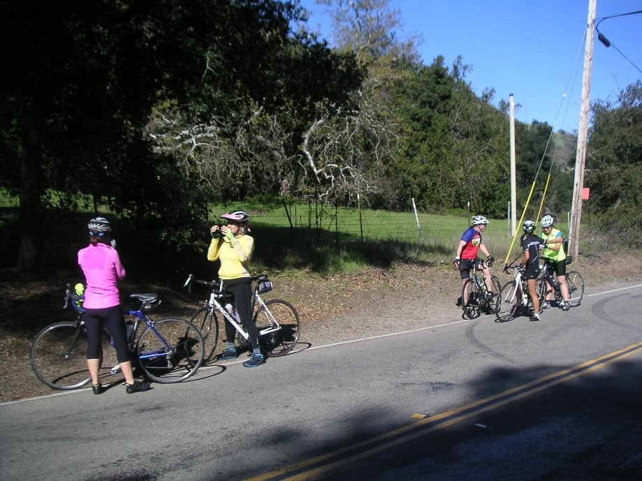 Trip photo #8/26 Regroup and optional turn-around at Geary Rd.