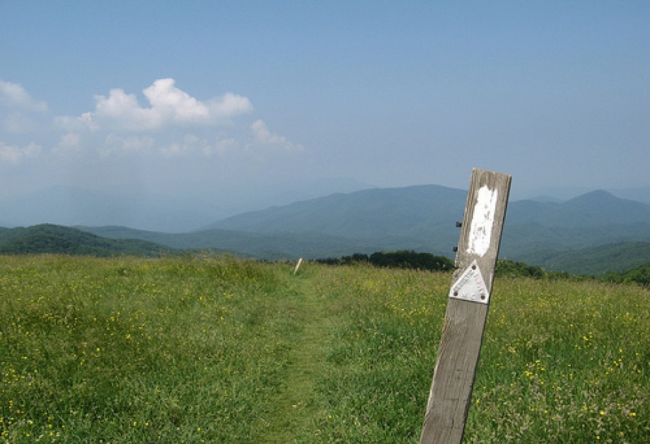 Trip photo #12/13 Max Patch, AT marker