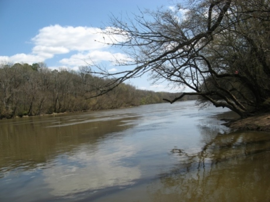Trip photo #19/20 Campbell Creek empties into Cape Fear River