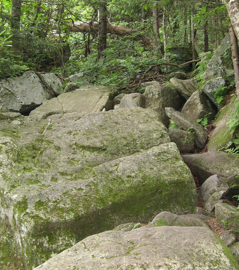 Trip photo #5/15 Boulders in trail