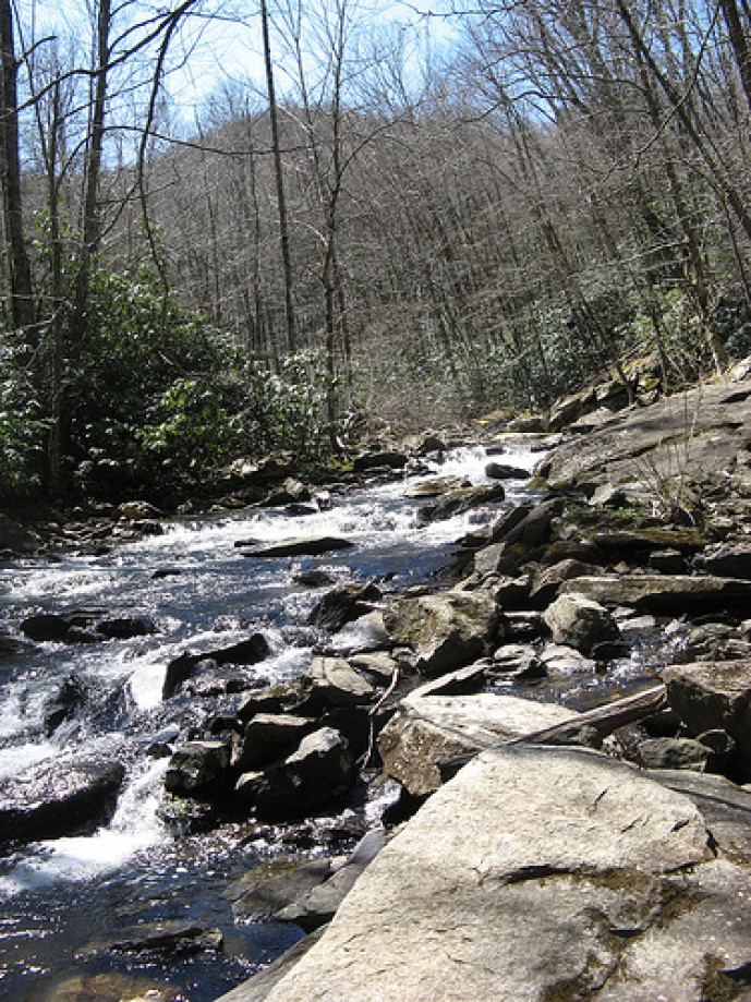 Trip photo #11/13 Another look at Boone Fork