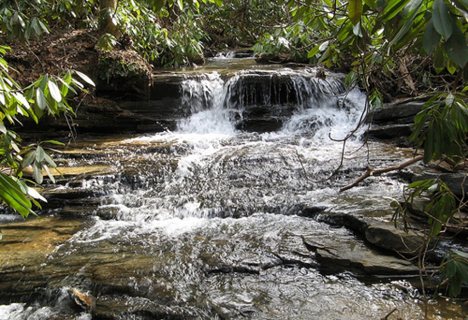 Trip photo #10/10 Small hidden waterfall, Section 2
