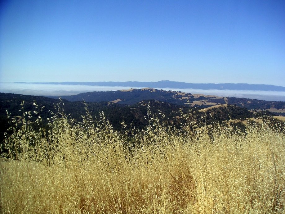 Trip photo #3/14 Loma Prieta and cloud layer over San Jose
