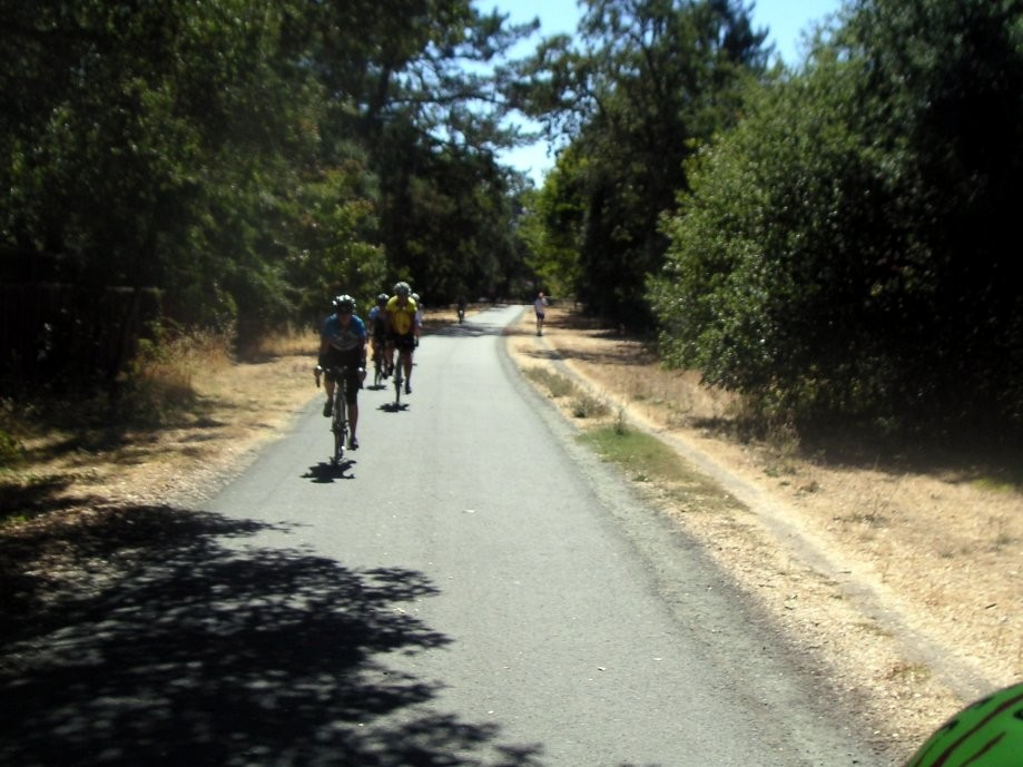 Trip photo #11/12 Back on Moraga-Lafayette trail