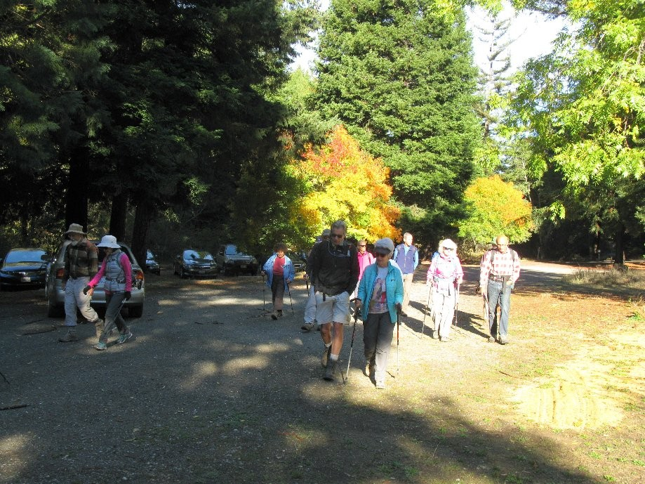 Trip photo #1/19 Start from Wayside Picnic Area