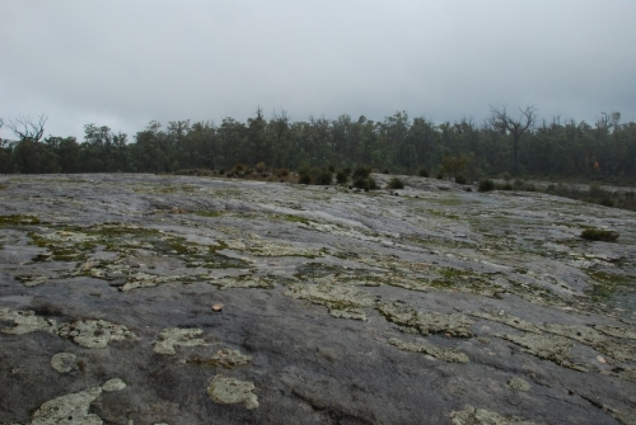 Trip photo #37/52 heavy rain on hidden rock