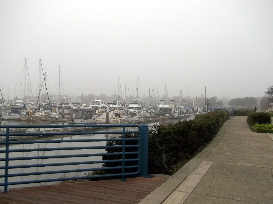 Trip photo #3/13 Benicia marina