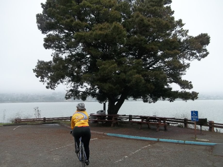 Trip photo #10/13 Dillon Pt. in Benicia State Rec. Area