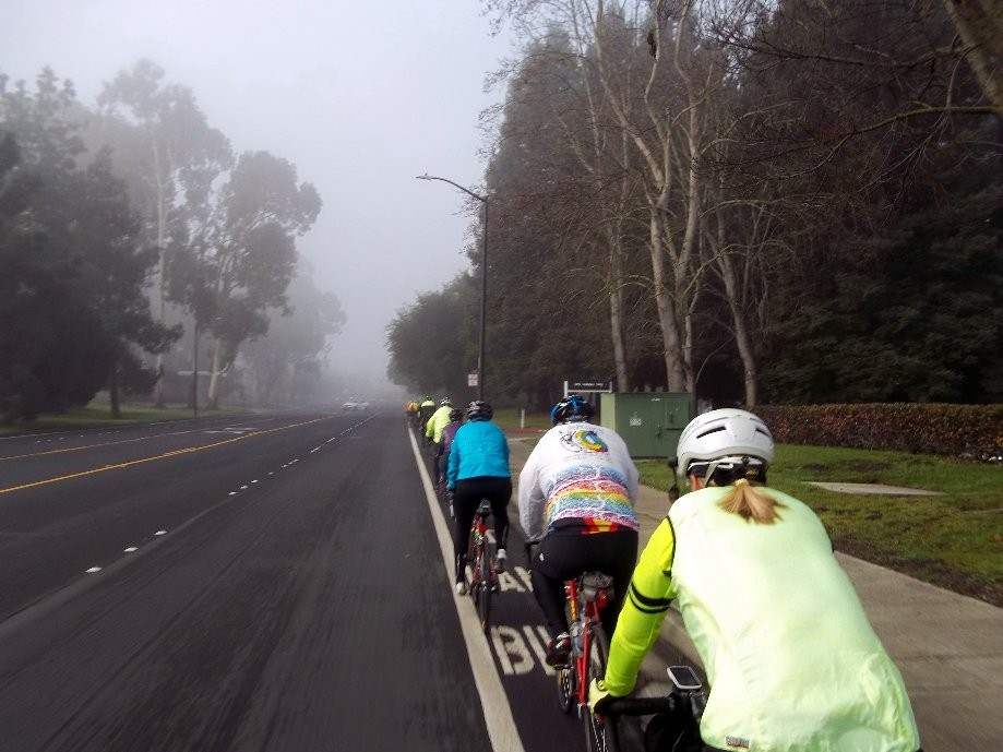 Trip photo #1/10 Foggy start on Norris Cyn. Rd.