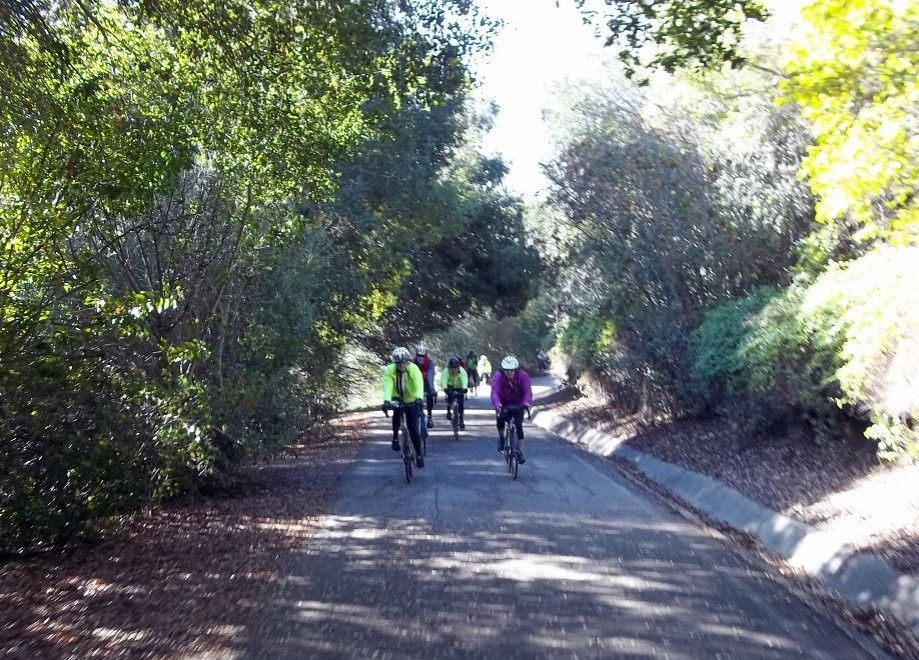 Trip photo #5/15 Alamo Creek trail