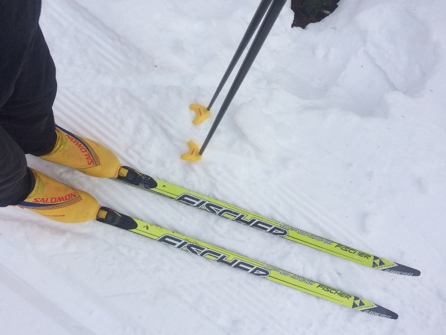 Trip photo #3/4 The new-to-me used skis.