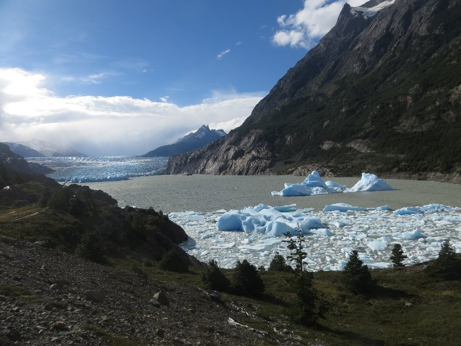 Trip photo #16/20 Mirador glacier Grey