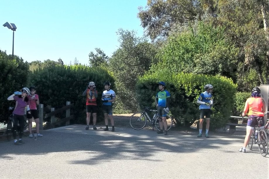 Trip photo #2/12 Regroup at Bay Trees Park in Castro Valley